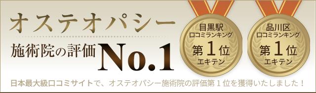 top-bnr1-sp